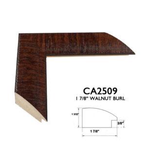 CA2509