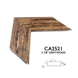 CA2521