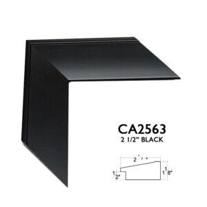CA2563