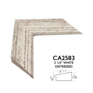 CA2583