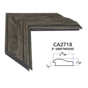 CA2718