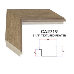 CA2719