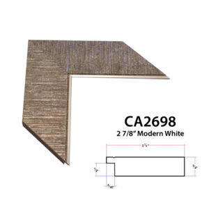 CA2698