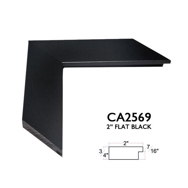 CA2569