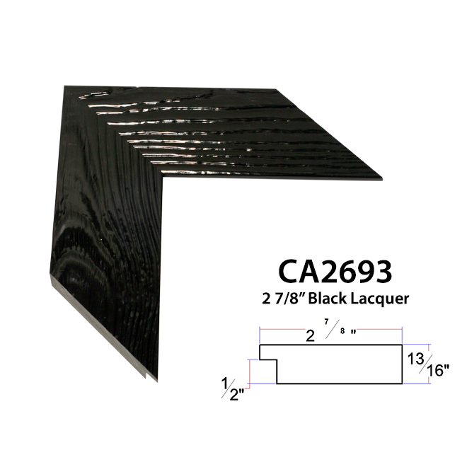 CA2693